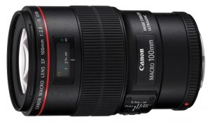 Canon 100mm f2.8 L IS USM Macro lens