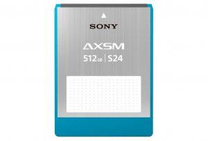 Sony AXS 512GB